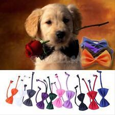 New 10 PCS/Set Lovely Cute Bow Tie Dog Cat Pet Puppy Necktie Adjustable Collar