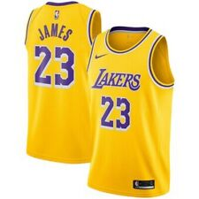 LEBRON CAMISETA DE LA NBA DE LOS LAKERS PARA NIÑOS. TALLA S,M,L,XL.