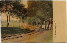 The Willows in Lewisburg PA Postcard 1908