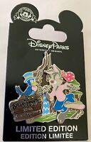 Disney Parks  SPLASH MOUNTAIN 25th Anniversary LE 1500 Brer Rabbit Slider Pin