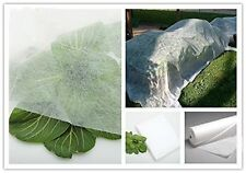 Agfabric 0.55 Oz 10'*50' Floating Row Cover and Plant Blanket Seed Germination