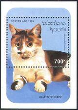 Laos 1995 Domestic Cats/Pets/Animals/Nature 1v m/s (b8128)