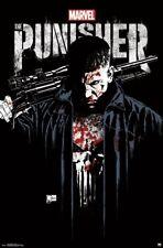 THE PUNISHER - KEY ART - TV SHOW POSTER - 22x34 MARVEL COMICS 16241