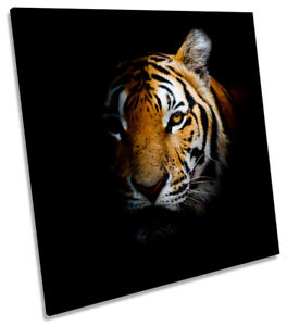 Tiger Face CANVAS WALL ART SQUARE Picture Print