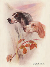 ENGLISH SETTER CHARMING DOG GREETINGS NOTE CARD TWO BEAUTIFUL HEADS