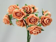 # 10 Small Peach Roses on stems by Green Tara