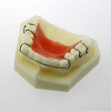 NEW Dental Model  Hawley Retainer Model #3007 01