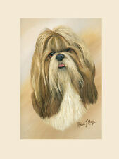 Original Shih Tzu Painting by Robert May