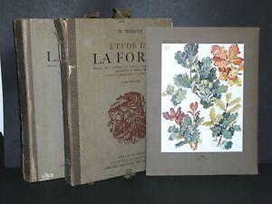 MATHURIN MEHEUT ETUDE LA FORET EDITION ORIGINALE PLANCHES COULEURS 2 VOL 1927