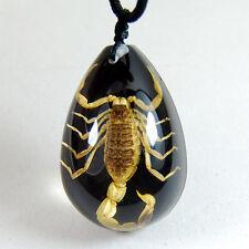 Pendentif d'Ambre Noire avec Scorpions Doré Collier Bijoux Accessoires Insecte
