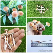 Miniature Dollhouse Fairy Garden Accessories Terrarium - 5 Tiny Brown Mushroom