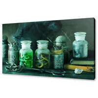 WITCH APOTHECARY JARS FUNKY MODERN GREEN CANVAS PRINT WALL ART PICTURE
