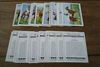 Wills - Racehorses & Jockeys Cards From 1938 - VGC! Pick The Cards You Need!