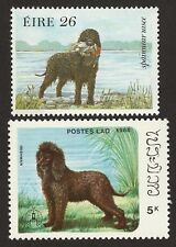 Irish Water Spaniel * Int'l Dog Postage Stamp Collection * Great Gift Idea *