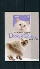 Liberia 2014 MNH Domestic Cats 1v S/S II Pets Ragdoll