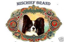 PAPILLON  Biscuit Tin - Treats and Collectible Tin