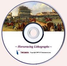 "MARCA Repro ""ANTICO"" HORSE RACING ARTE STAMPE DVD"