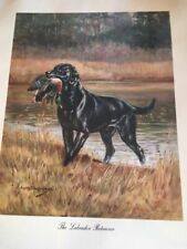 "1974 Vintage Currier /& Ives HUNTING /""HUNTER CATCHING A TARTAR/"" COLOR Lithograph"