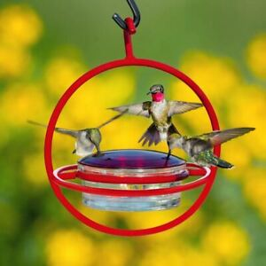 7 1/2 Hanging Sphere Hummingbird Feeder with Perch Red By Couronne Company