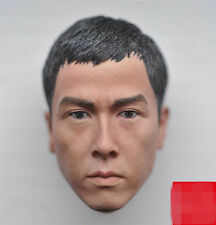 1:6 Scale Hong Kong Actor Donnie Yen Head Carving F 12'' Male Figure Body