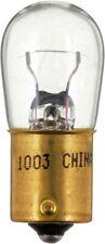 Trunk Light Bulb-Base Philips 1003B2