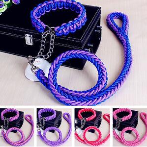 Dog Leash P style Collars Chain Rope Heavy Duty Training Slip Lead Big XL L M S