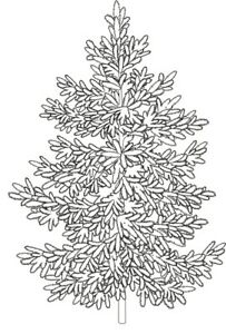 Christmas - Tree - Evergreen -  Fir #4 Unmounted Clear Stamp Approx 40x60mm
