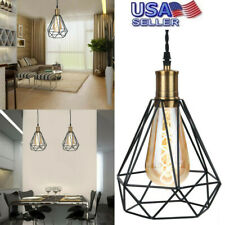 Pendant Light with Plug in Switch Hanging Lamp,Metal Cage Shade Swag Lighting