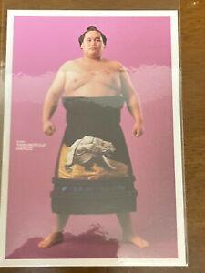 Sumo postcards rikishi wrestler Hakuhō Ura Wakatakakage Tochinoshin