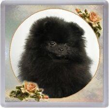 Pomeranian Coaster No 6 by Starprint
