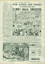 Antique B&W Advertisement Print Ellimans Embrocation & Enos Fruit Salt 1892