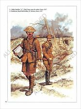 PLANCHE UNIFORMS PRINT WWI BRITISH ARMY Tommy Battalion A Tank Corps France 1917