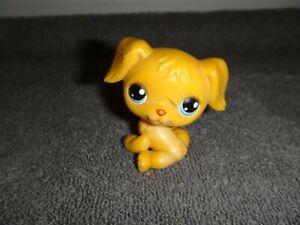 LITTLEST PET SHOP YELLOW DOG #21 GOLDEN RETREIVER BLUE EYES