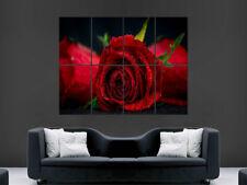 Red ROSE FIORE POSTER Macro Art Roses Foto Stampa Grande Enorme