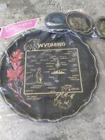 Vintage Decorator Style Souvenir Wyoming State Round Metal Tray 6 Coasters