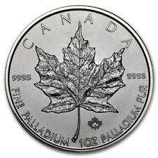 1 oz Palladium Maple Leaf  2015 - 50 Dollar Kanada Palladiummünze 999,5