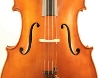 fine old cello lab. Lucci 1951 violoncello italian viola 小提琴 ヴァイオリン geige altes