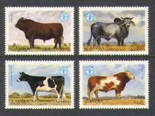 Zambia 1987 FAO/Cattle/Cows/Farming/Animals/Nature/Food/Hunger 4v set (n20884)