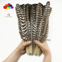 100 pcs 14-16 Inch 35-40CM Scare Real Natural Turkey feathers Wedding decoration