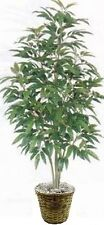 ARTIFICIAL GREEN MANGO TREE 5' SILK BUSH PLANT TROPICAL IN BASKET PALM PATIO
