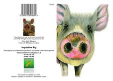 Greeting cards Inquisitive Pig Art