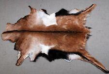 "New Goat hide Rug Hair on Area Rug Size 32""x22"" Animal Leather Goat Skin U-9567"
