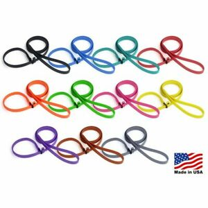 Biothane Slip Lead For Dogs, Handmade, Durable, Made in USA, 5 feet - 10 colors