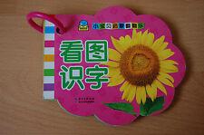 Kinderbuch, einfache chinesische Vokabeln mit Bildern für Anfänger, NEU