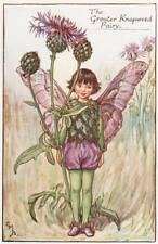 Flower Fairies: The Greater Knapweed Fairy Vintage Print c1930 by C M Barker