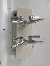 2 set of Lab Needle Double Valve