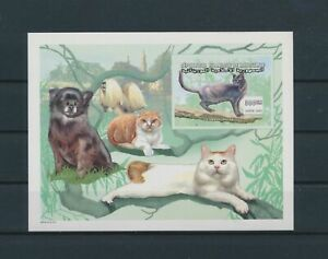 LO04303 Mauritania pets animals cats imperf sheet MNH