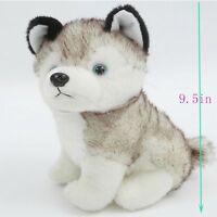"7""/9.5""/12"" Cute Plush Husky Doll Soft Toy Stuffed Animal Cute Dog Kids Toy Gift"