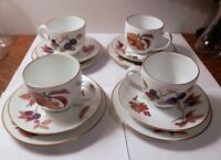 12 pc Royal Worcester Evesham Bread & Butter Plate Cup Saucer 1961 Gold England