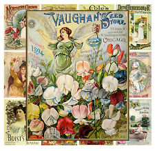 "Mini Posters [13 pages 8""x11""/A4] Flowers Garden Vintage Seed Pocket Ads MP562"
